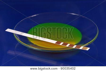 Test Strip