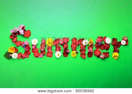 Word SUMMER from colorful petals of fresh flowers on green background