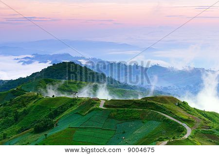 Road To Top Of Misty Hill At Dawn Thailand