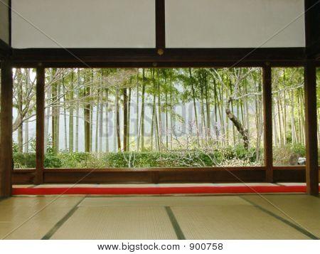 Blick vom Tempel zum japanischen Garten