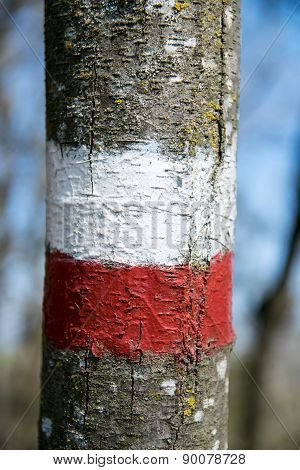 Markings Which Indicate The Continuity, In Both Directions, Of A Route Marked. The Colors Adopted By