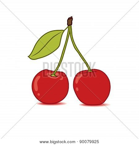 Sweet hand drawn red cherry illustration on white