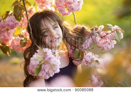 Cute Girl Amid Cherry Blooming