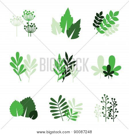 Green Floral Icons