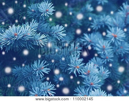 Winter forest magic greeting card