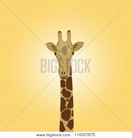 The Head Of A Giraffe On A Yellow Background
