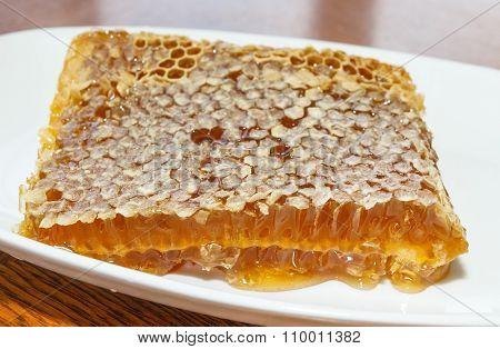 Honey In Plate
