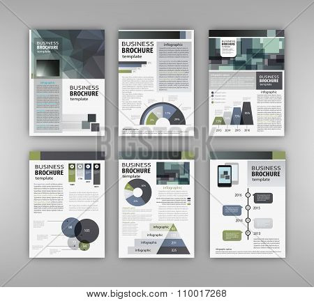 Brochure Template With Charts And Graphs