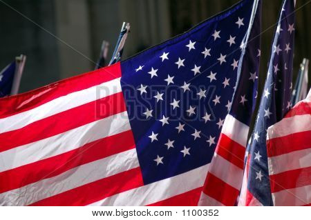 Group Of American Flags