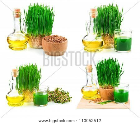 Wheatgrass Juice With Sprouted Wheat And Wheat Germ Oil, Set