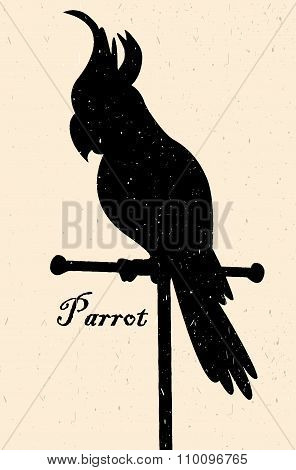 Silhouette Of The Bird. A Parrot On A Perch