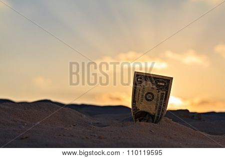 Dollar's Sunset