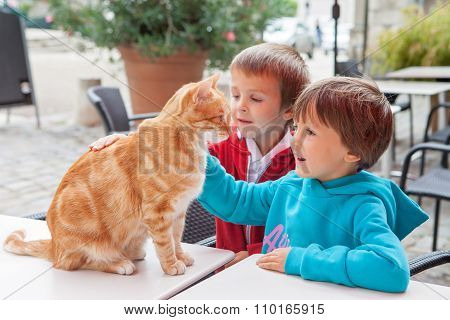 Happy Little Boy, Child, Playing With Lovely Cat Outdoors