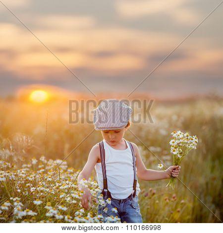 Beautiful Little Boy In Daisy Field On Sunset