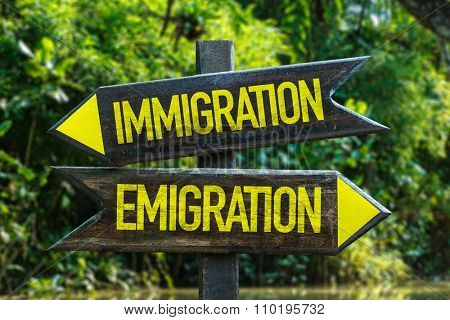 Immigration - Emigration signpost with forest background