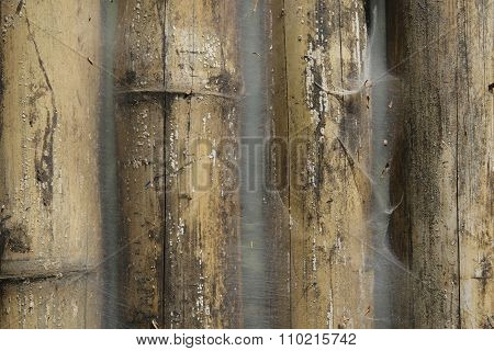 Closeup Of Old Grunge Bamboo Fence Covered With Cobweb