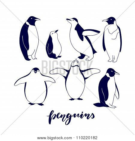 Hand Drawn Cartoon Penguins Isolated On White Background.