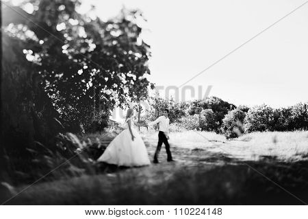 B&w Elegant Bride In White Dress And Handsome Groom Walking In The Field