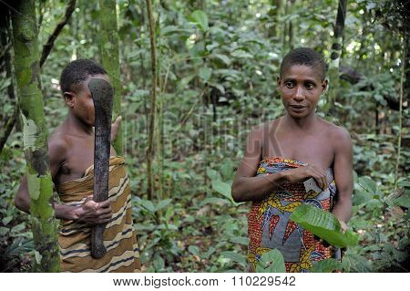 Jungle Portrait Of A Woman From A Baka Tribe Of Pygmies.