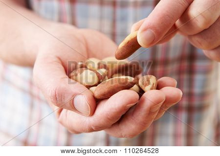 Close Up Of Man Eating Healthy Snack Of Brazil Nuts