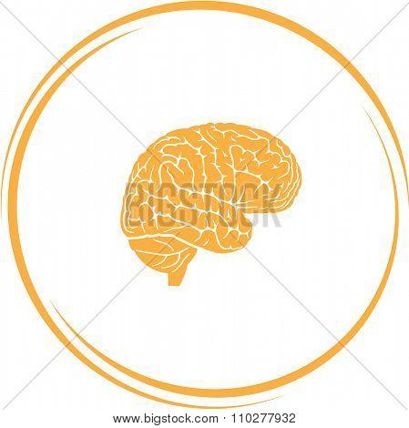 brain. Internet button. Raster icon.
