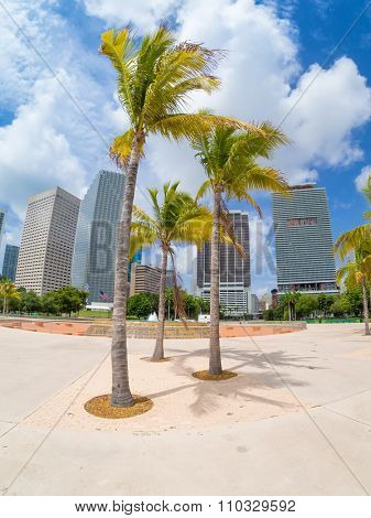 Bicentennial park in Miami with a view of the city skyline