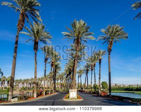 Road into the JW Marriott Desert Springs