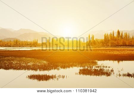 Sunrise view at Holy Fish Pond, Shey Monastery, Leh Ladakh, India.
