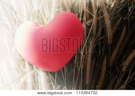 Red heart on grass flower with white and black light the concept of good and bad or angel and devil in human heart poster