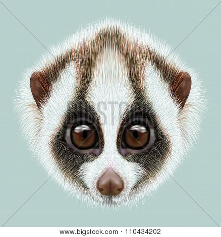 Illustrated Portrait Of Slow Loris
