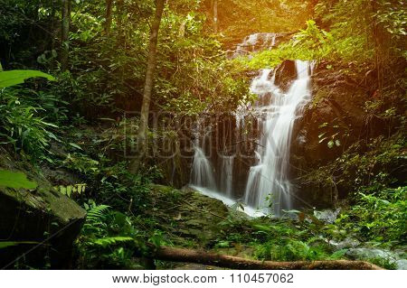 Tranquil Flowing Waterfall In A Lush Rainforest