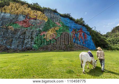 Prehistoric wall in Vinales, Cuba