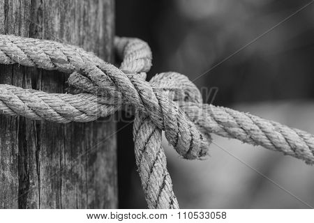 Knot Of Thick Rope Tied Around A Wooden Stake