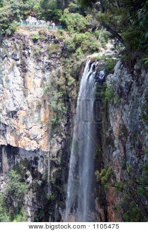Springbrook Waterfalls
