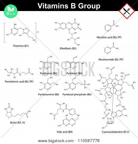 Vitamins Of B Group