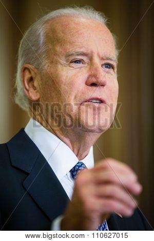 Vice President Of Usa Joe Biden