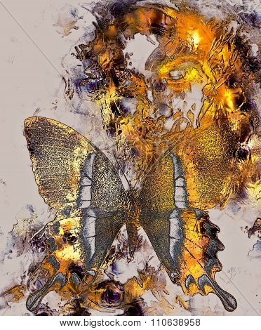 Beautiful Goddness women and color butterfly, mixed media, abstract color background, Golden effect.