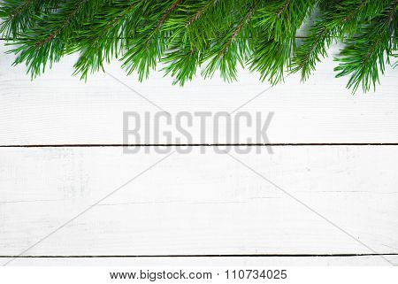 Winter Christmas Background With Fir Branches