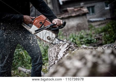 Lumberjack Worker In Full Protective Gear Cutting Firewood And Timber