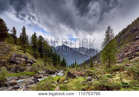 Overcast Over Mountain Stream