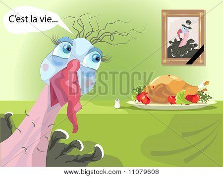 Funny Turkey