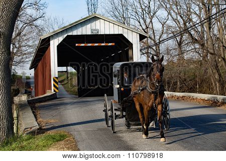Amish Buggy At Covered Bridge