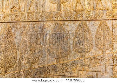 Wall relief in Persepolis