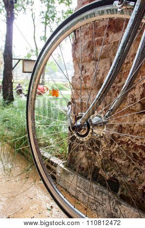 bicycle wheel in a rainy