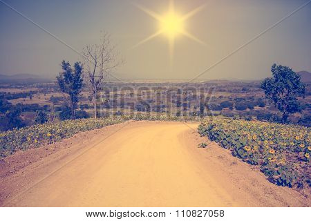 Beautiful Mountain Path In Summer,vintage Toning
