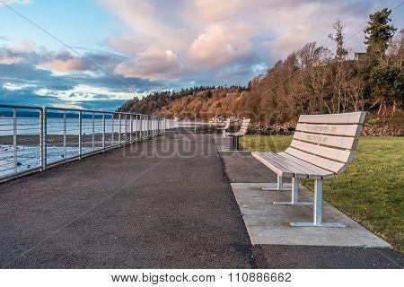 Shoreline Benches