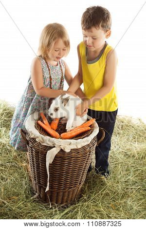 Children play with a rabbit