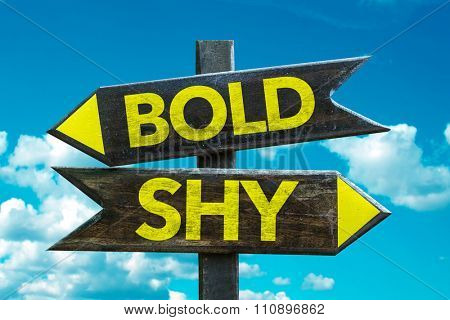 Bold - Shy signpost with sky background