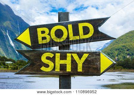 Bold - Shy signpost