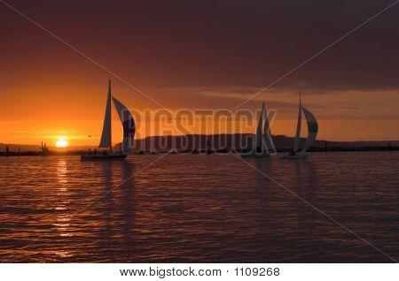 Sailboats With Sunset Pct1031